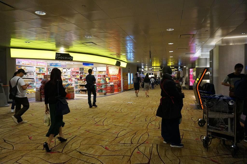 帰国経路が複雑と判明するもチャンギ空港に感動する